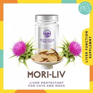 Mori-liv - Liver Protectant