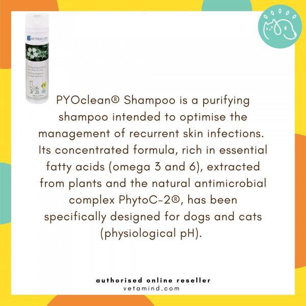 Pyo Clean Shampoo Main Function