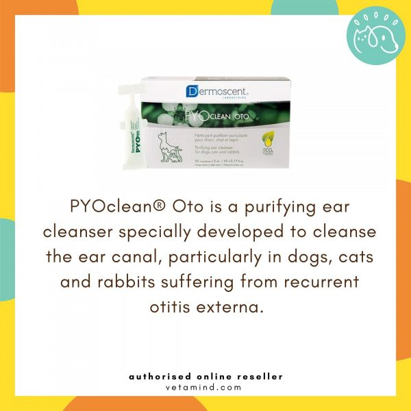 Pyo Clean OTO Main Function