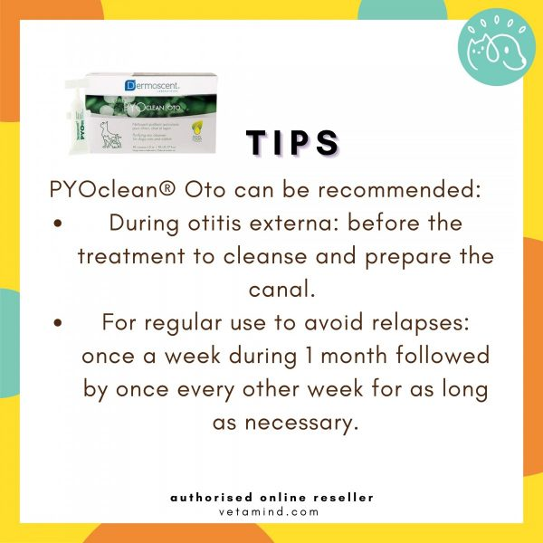 Pyo Clean OTO Tips to Use