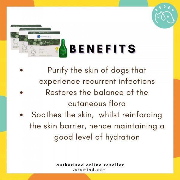 Pyo Spot Benefits