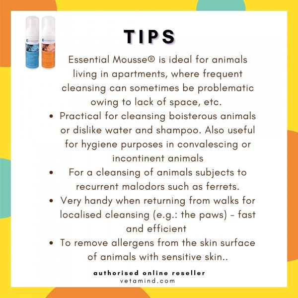 Essential 6 Mousse Tips to Use